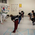 Tae Kwon Do in NSL